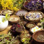Фитотерапия: какие травы при геморрое самые полезные?