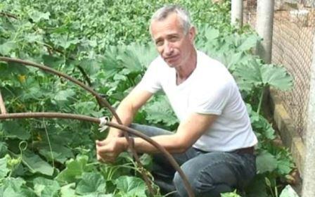 доктор Попов лечение геморроя огурцом